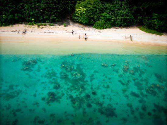 beach-and-sea-and-jungle